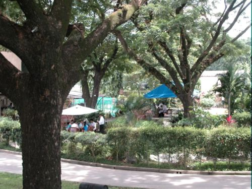 View of Vincafe garden Dining in 2005