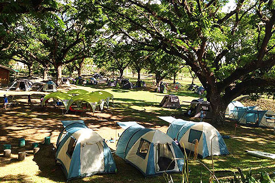 Glamping-14May-Overhead